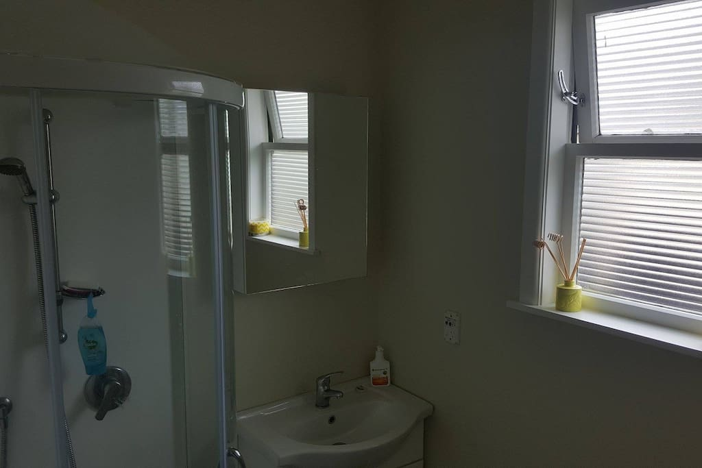 New Bathroom with spacious shower.