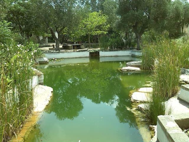 Waterly place - Rione Riesci - Villa