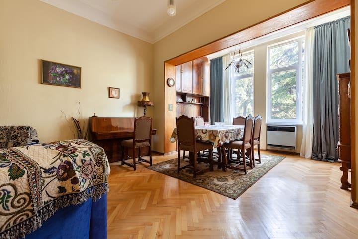 Apartment on Amashenebeli 147