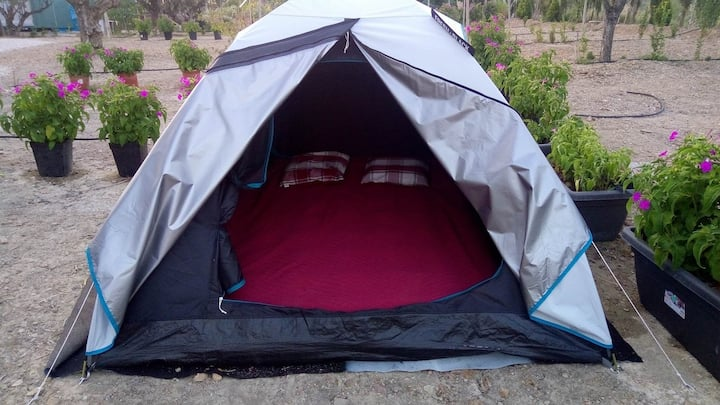 Basic Tent for 2 - ECO-CAMPING