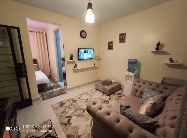 Luxury apartment studio