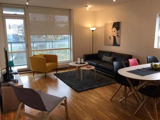 Amazing apartment down town Reykjavik with view