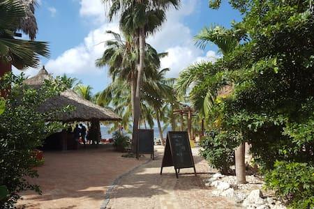 Beach Apartment/Villa 3 , Blue Bay Resort & Golf - Sint Michiel