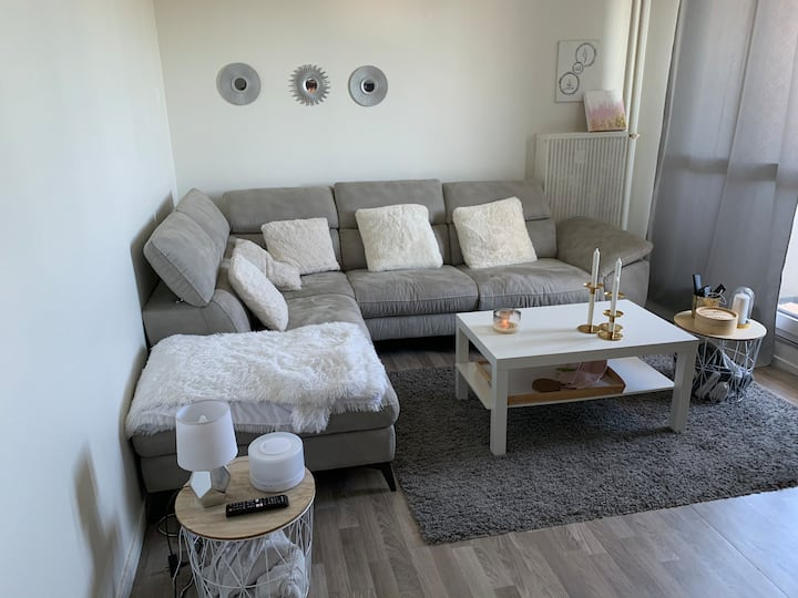 Appartement moderne Tours