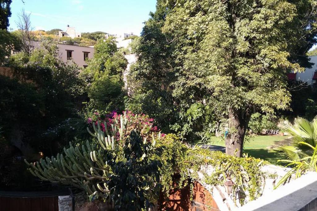 Quiet and relaxing neighborhood, away from the noise of city centre. View form the terrace.