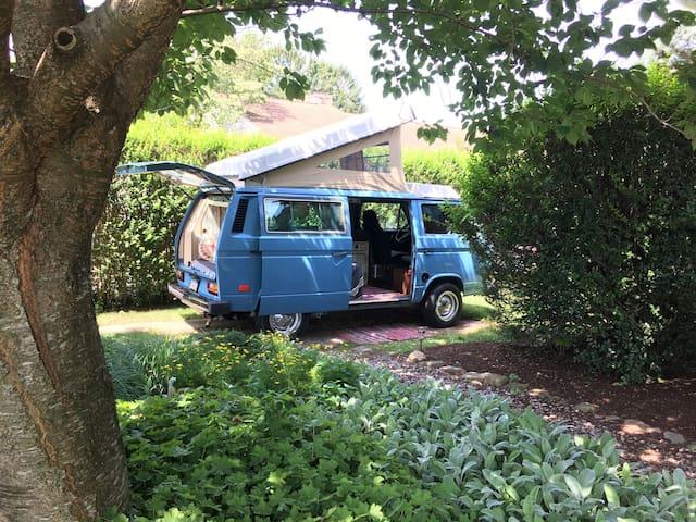 """""""Weston"""" the 1982 Volkswagen Vanagon glamping"""