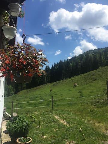 Naturidylle in den Bergen