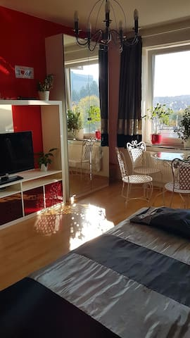 Sunny room,with private bathroom perfect location