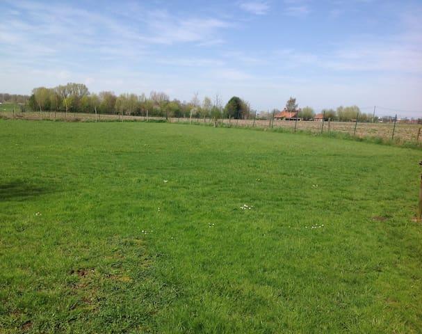 Hof ter Brabant, gezellige studio, zonnig terras.