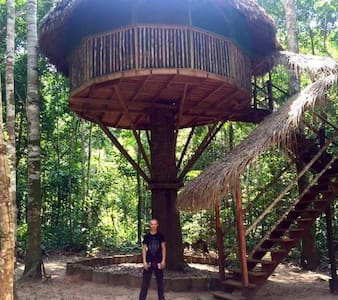 Treehouse Refuge in the Amazon Jungle!