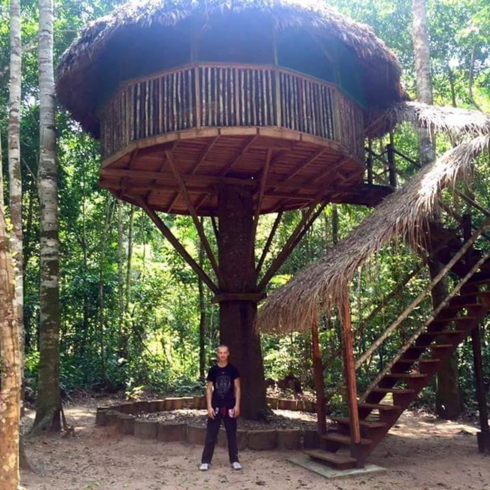 Our tree houses are tall!