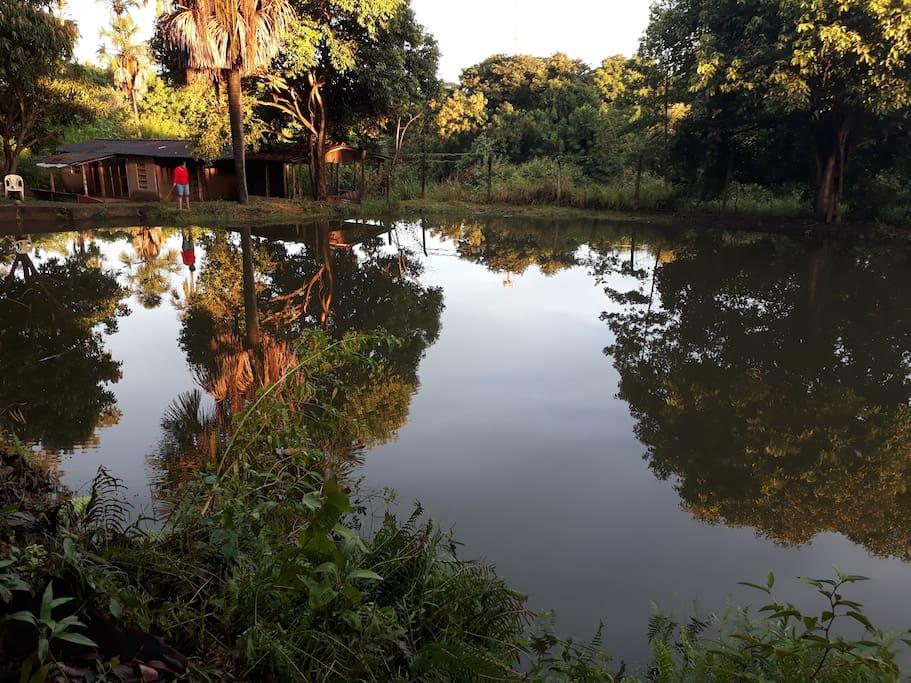lagoa p/pesca esportiva