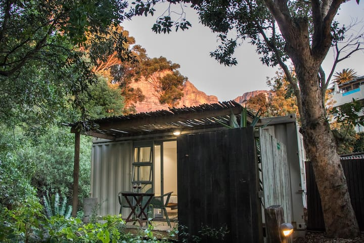 Forest Pod 1 for adventurers in Camps Bay
