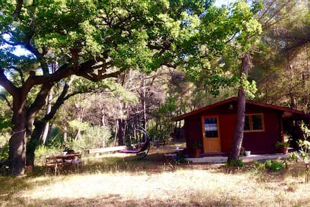 Jolie cabane dans la garrigue - Aubagne - Blockhütte