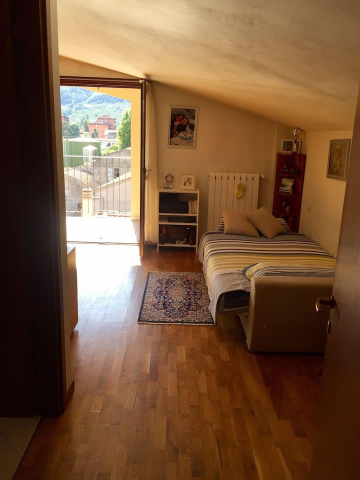 Ampia stanza,bagno privato+terrazza vicino Firenze