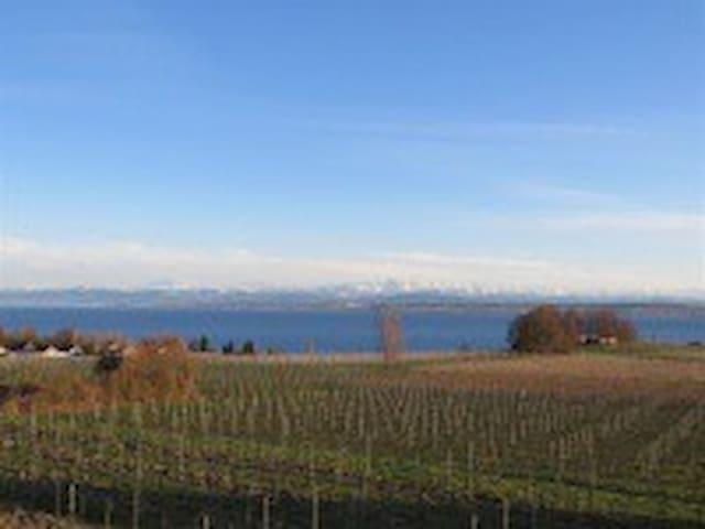 Traumwohnung mit fantastischem See- und Alpenblick - Meersburg