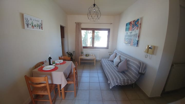 Mires private city center flat