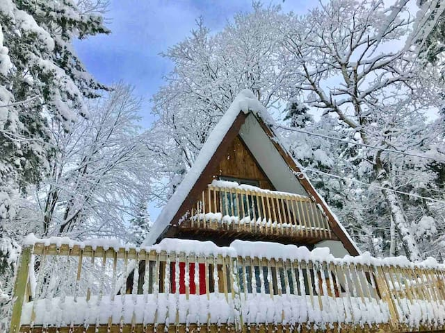 LOCATION! Cozy Aframe, just minutes to Mount Snow!