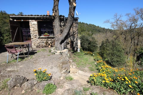 Gîte de l'Erable nature WIFI terrasse Pays Cathare
