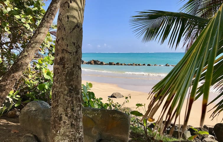 Gorgeous Beach Apartment in Isla Verde PH - Carolina - Apartment