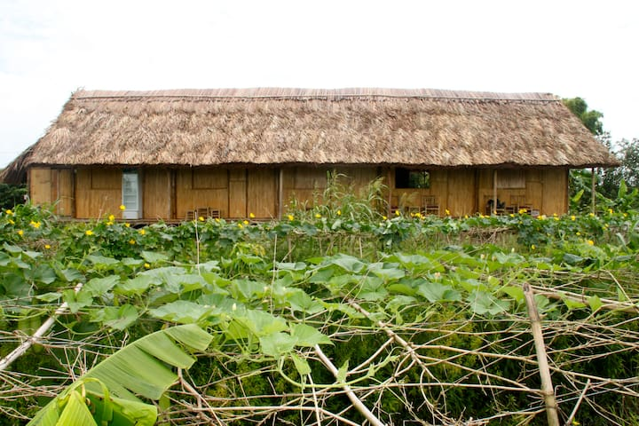 Nguyen Shack - Can Tho (Basic room)