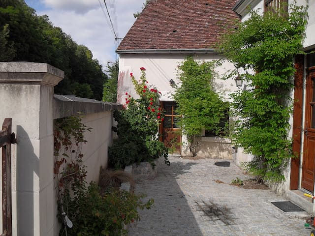 Maison de famille à proximité du zoo de Beauval - Villentrois - Willa