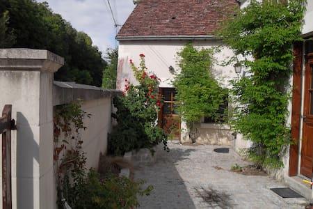 Maison de famille à proximité du zoo de Beauval - Villentrois