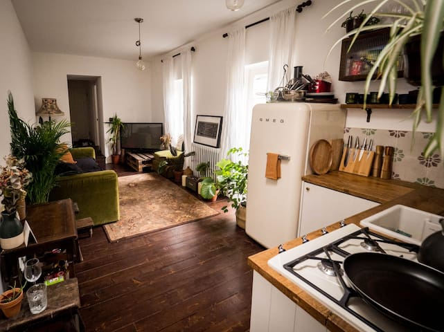Cosy East London HideAway in the Heart of Clapton.