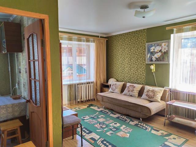 Панорама гор из окон  -1 комнатная квартира