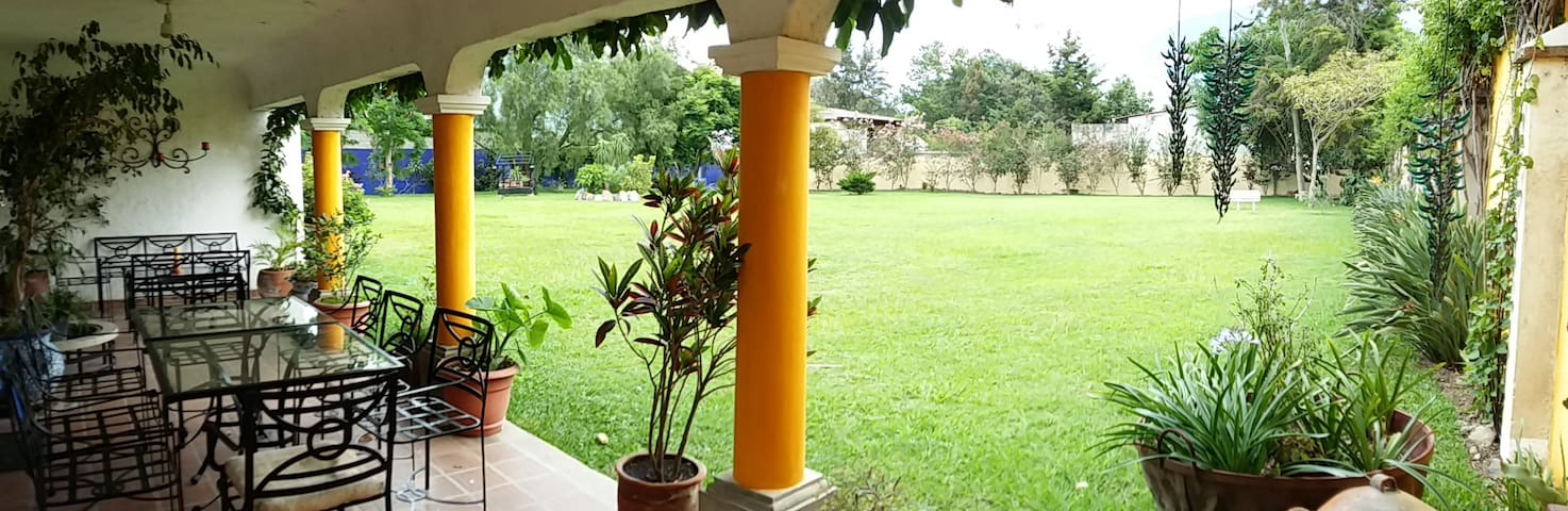 Beautiful yard and garden