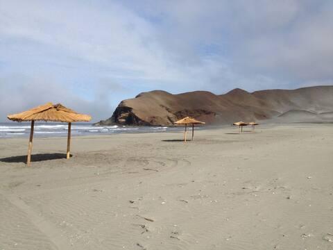 Campers para alquilar en Playa Patitos