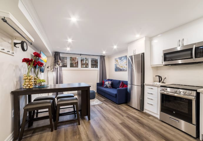 Brand new High Park Roncesvalles apartment