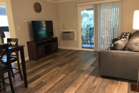 Near downtown Pleasanton, entire new apartment.
