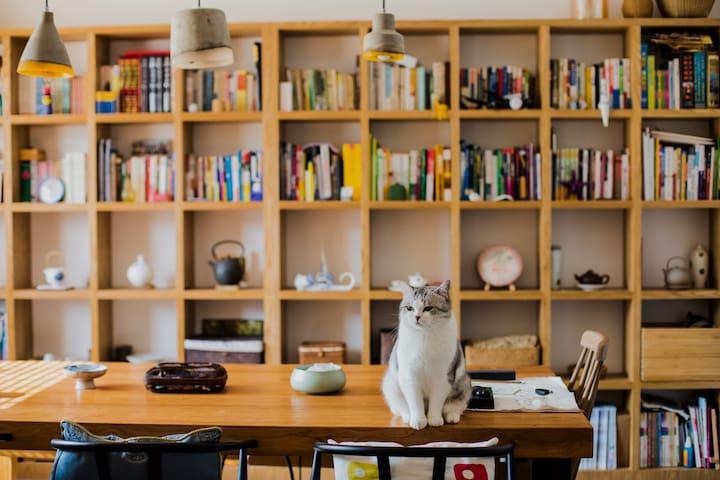 【里墅】漫山茶园中,萌猫相伴的静美时光(独立房间+营养早餐) - 杭州 - House