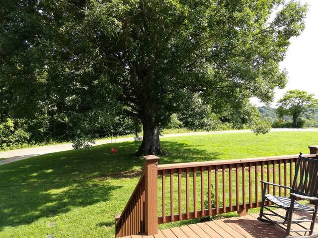 Large oak tree with child's swing