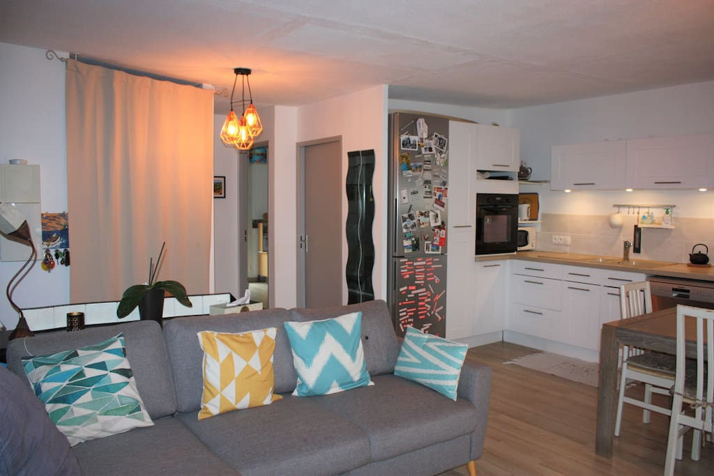 Salon, cuisine et espace repas