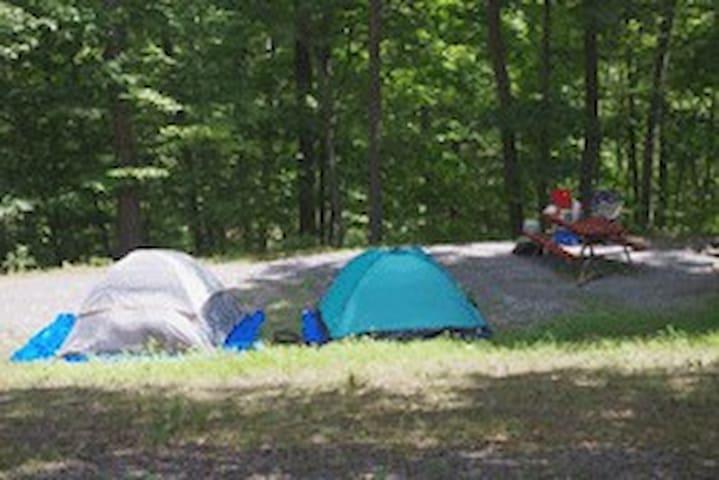 Primitive camp site 2C