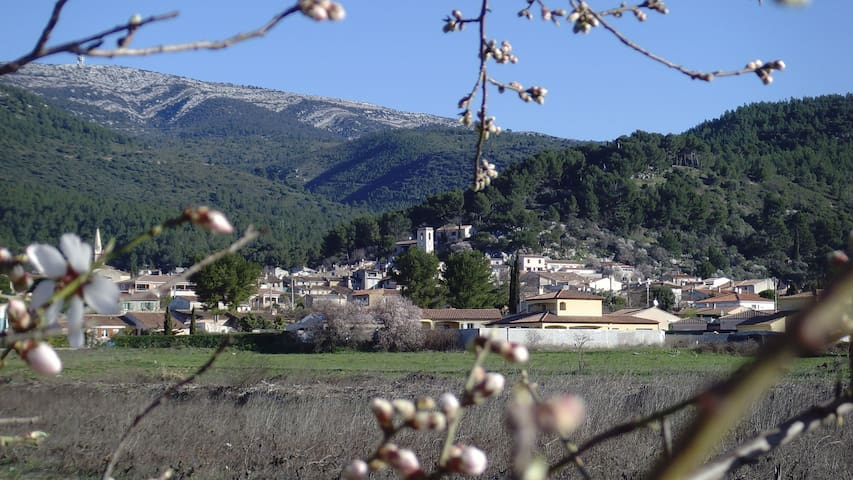 le village de Cuges les Pins.