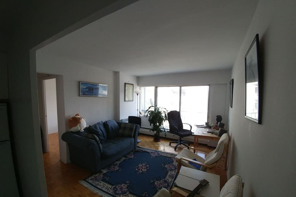 Cozy One Bedroom In The Middle Of Town Apartments For Rent In Montr Al Qu Bec Canada