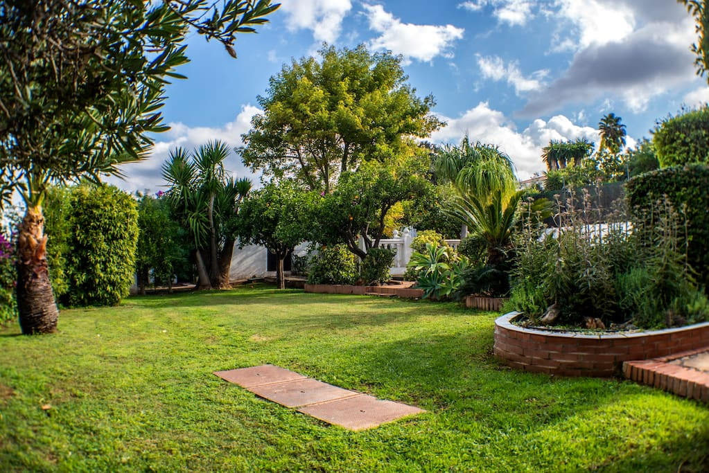 Manicured backyard with a variety of flora and citrus trees.  During the winter, enjoy fresh oranges, mandarins, lemons, and limes.