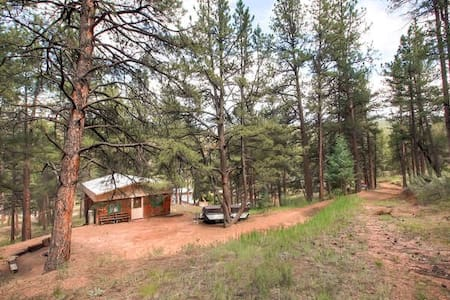 Cozy cabin-steps to S. Platte River(fly-fish/tube)