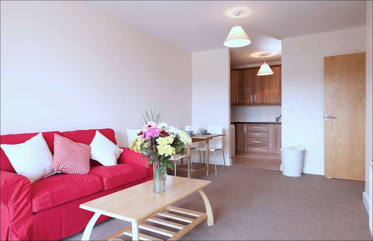 Apt 201 Premium 2 Bed, 2 Bath- sleeps 3 - Dublin - Apartemen