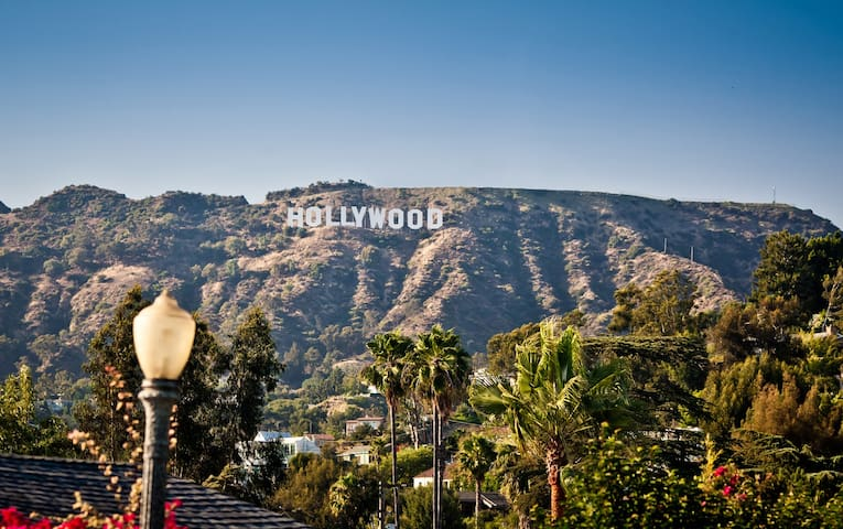 Hollywood Studio (DM for Nov/Dec discounts)