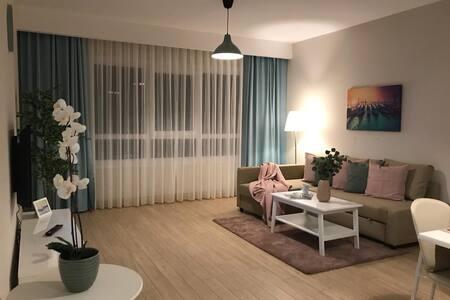 Elegant Apartment 1+1  (140)