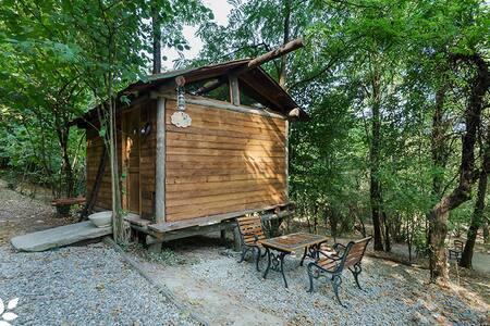 La casetta di legno nel bosco delle fate