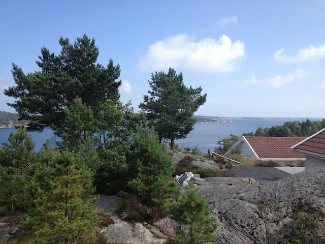 Fin utsikt til sjøen