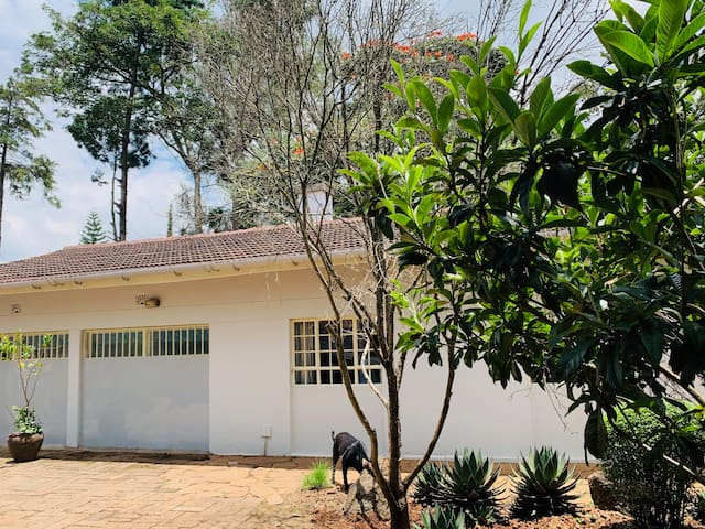 Twiga Cottage fabulous 2 bed by the Giraffe Centre