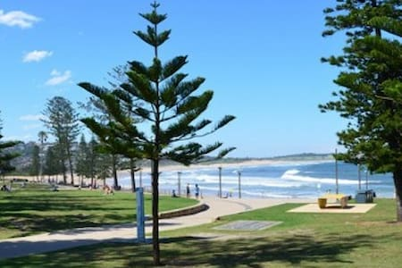 Gorgeous 2 bedder moments from the beach - Dee Why