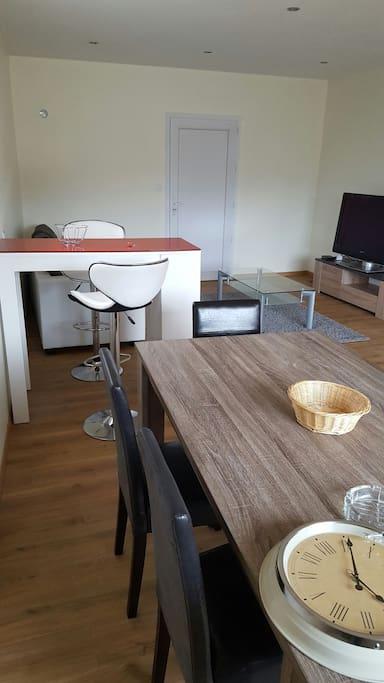Une grande pièce avec salon, cuisine et coin repas.