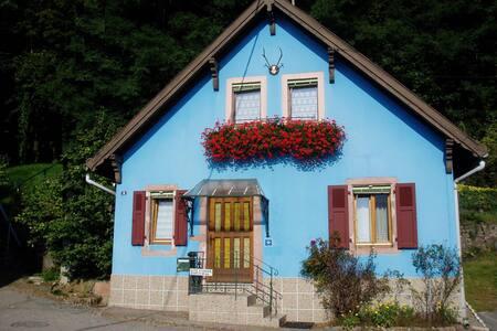 """Maison pour 5 personnes """"Les Coulemelles"""" - Jungholtz"""